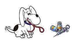 vaccinazioni-cane